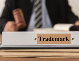 Trademark Modernization Act Part One- Stanton IP Law Firm - Tampa Florida