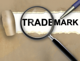 Trademark Search - Blog - Intellectual Property - Stanton IP Law Firm