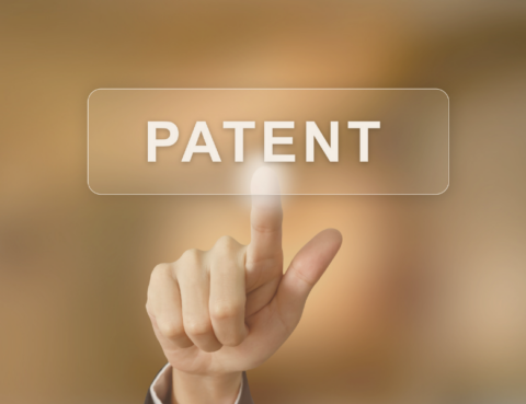 What Is The Difference Between A Patent Attorney and A Patent Agent - Intellectual Property - Blog - Patents - Tampa - Florida
